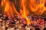 ACTIVA Grill Pelletsmoker XXL Grillwagen Smoker BBQ Barbeque Räuchern Smoken Räucherofen, Pellet-Smoker, inkl. 10 KG Pellets Buche - 9